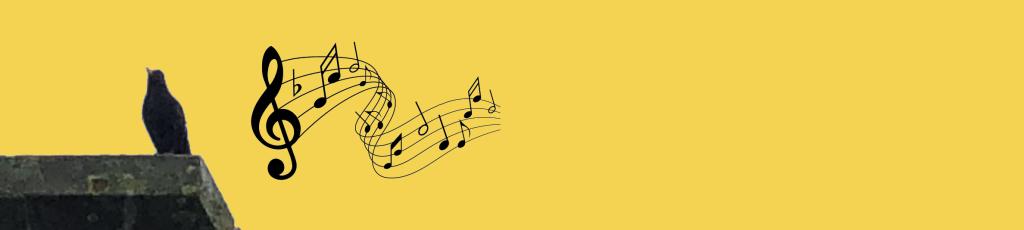 De merel maakt met zijn gezang een concertzaal van de Radiotuin. Dus: even genieten van het geprrrr en proeprieieie....